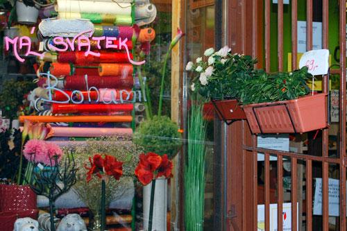 Welche Blume soll es sein? Laden bei der Haltestelle Jana Masaryka
