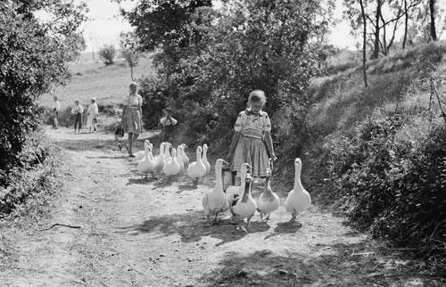 Ferdinand Bučina entdeckte in den vierziger Jahren die ländliche Idylle.